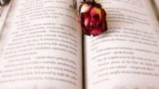 续书,可否,创意,写作,看作,小说 小说续书可否看作创意写作