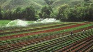 再添,遗产,两处,灌溉,工程,世界 中国再添两处世界灌溉工程遗产
