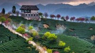 5G 国内将迎来今年第一个旅游高峰